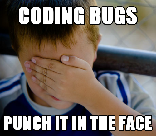 Coding Bugs Punch it in the face